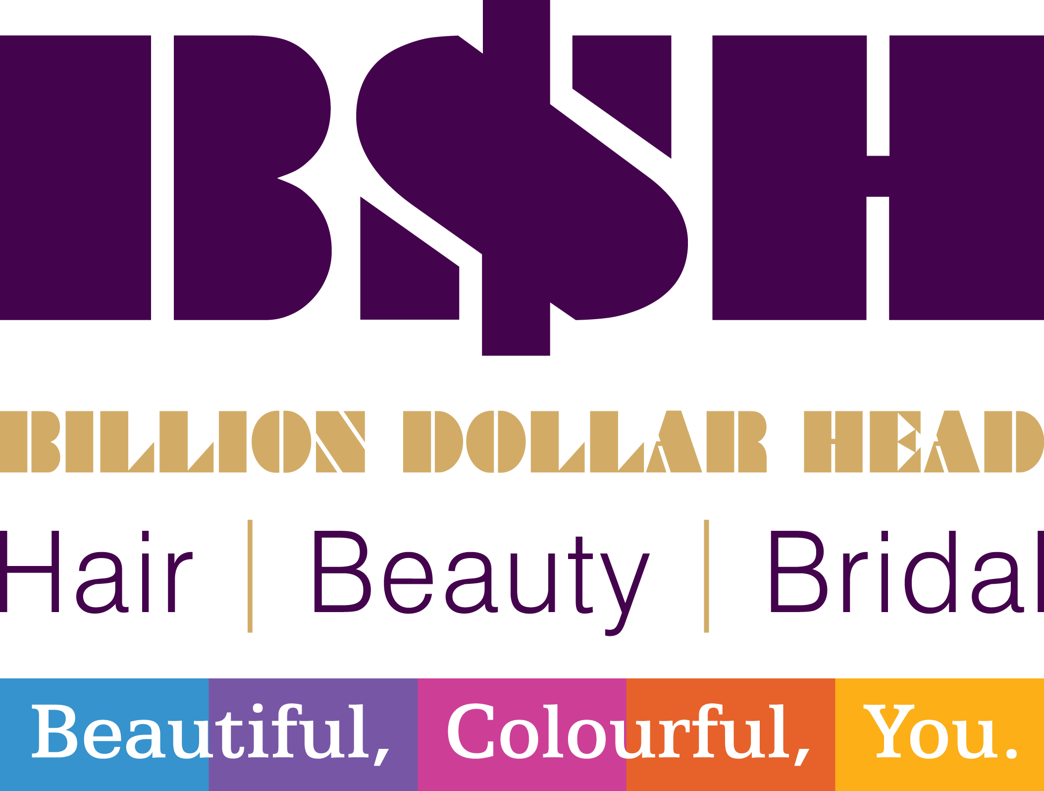 Billion Dollar Head Logo